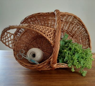 Jak bylinky správně sbírat, sušit a uchovávat